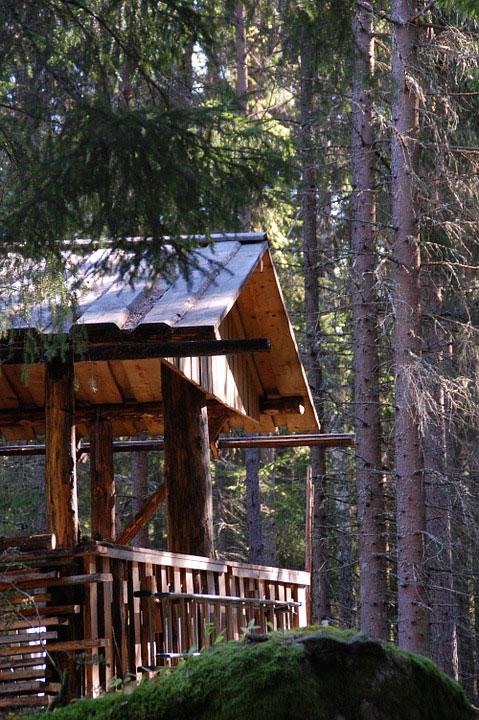 cabane-dans-les-arbres